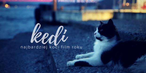 KEDI head