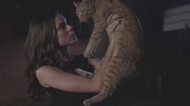 catpower04